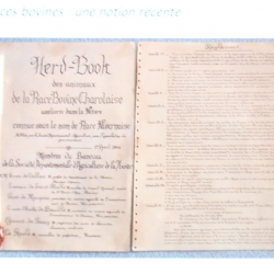 La Charolaise - Herd Book Charolaise